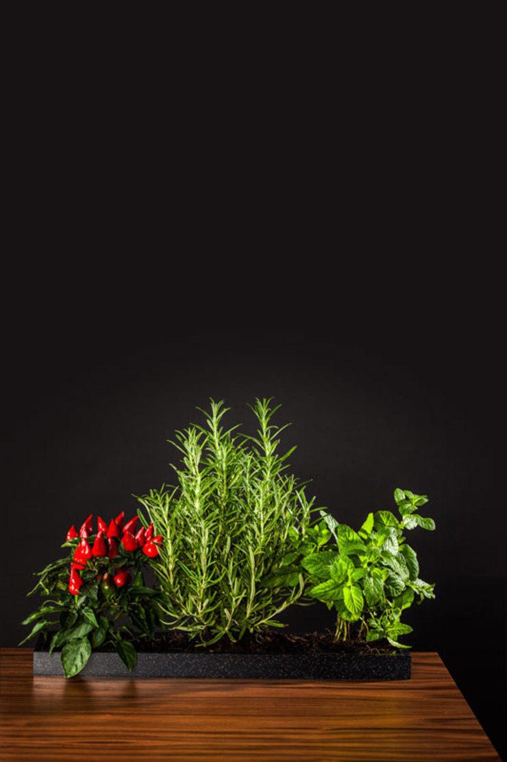 Charlotte Raynaud Studio KitchenAccessories & textiles Black