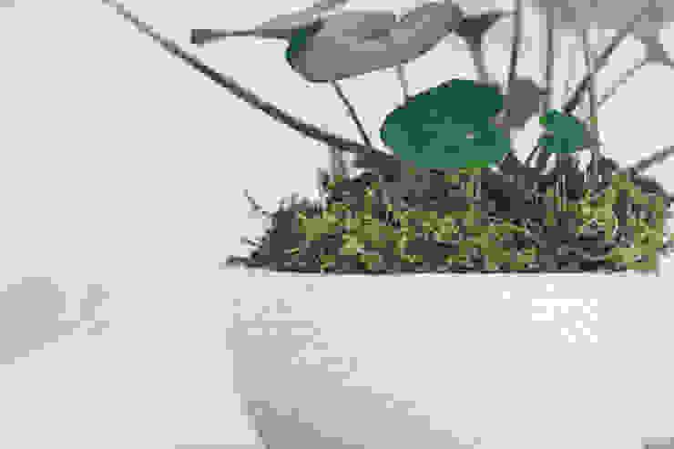 地器とツワブキ: 陶刻家 由上恒美                                          Ceramic Sculptor  tsunemi yukami  が手掛けた現代のです。,モダン 陶器