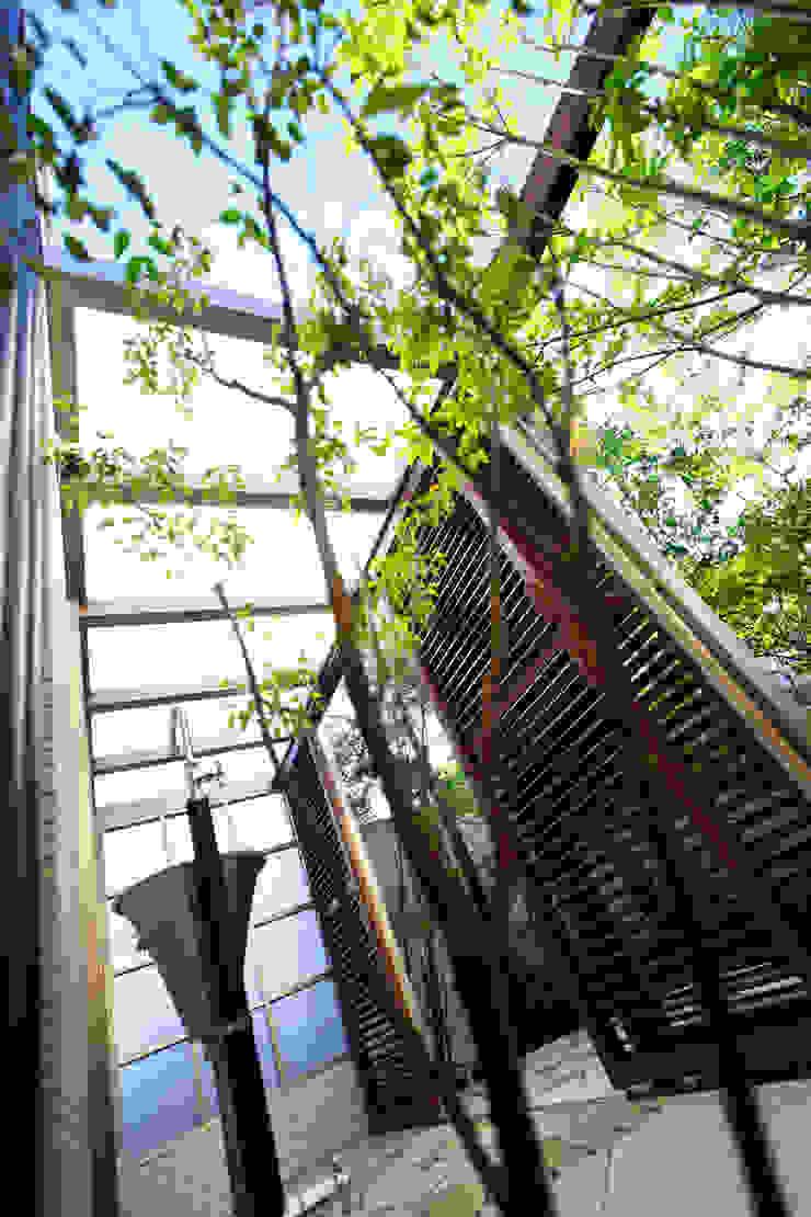 にわいろSTYLEの庭(2) 2015~ オリジナルな 庭 の にわいろSTYLE オリジナル