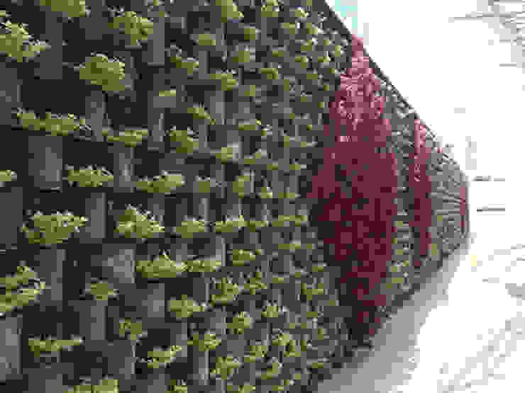 Jardines de estilo  por homify, Moderno Concreto