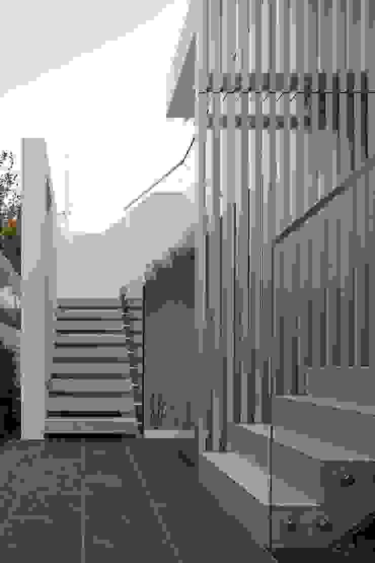 SAKURA SAKURA SAKURA HOUSE モダンな 家 の Mアーキテクツ|高級邸宅 豪邸 注文住宅 別荘建築 LUXURY HOUSES | M-architects モダン