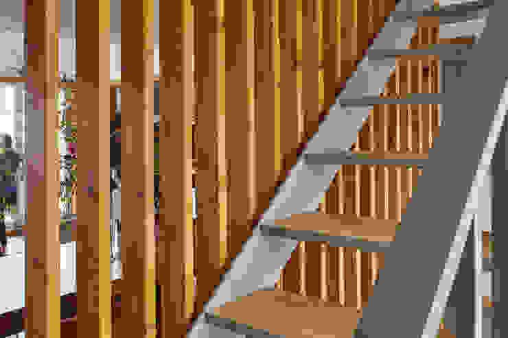 Couloir, entrée, escaliers scandinaves par Estudio de Arquitectura Sra.Farnsworth Scandinave Bois Effet bois