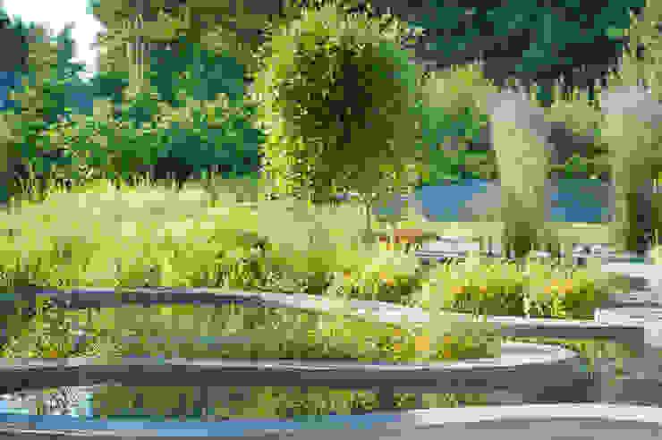 Modern Garden by Pracownia Projektowa Architektury Krajobrazu Januszówka Modern