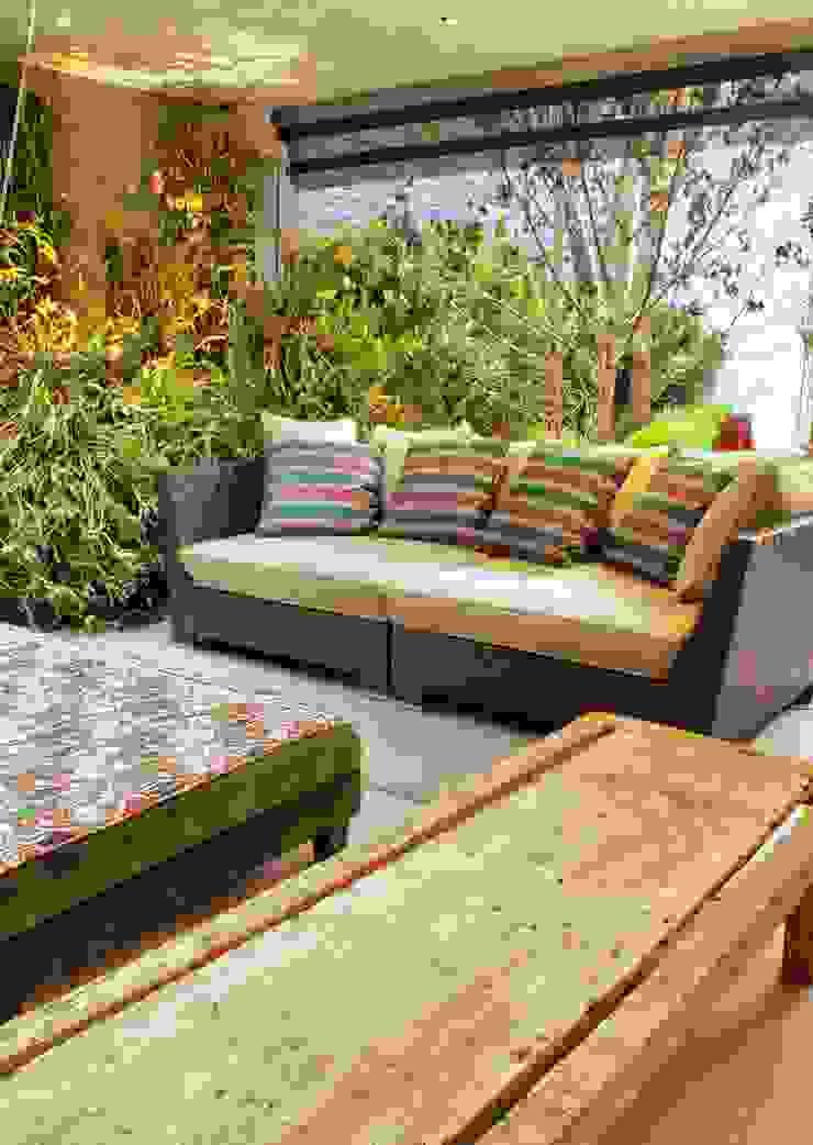 PROJ. ARQ. SUSANA NEDEL Jardins de inverno modernos por BRAESCHER FOTOGRAFIA Moderno