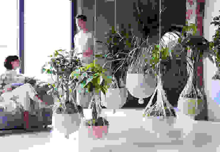 Pflanzenfreude.de:  tarz İç Dekorasyon,