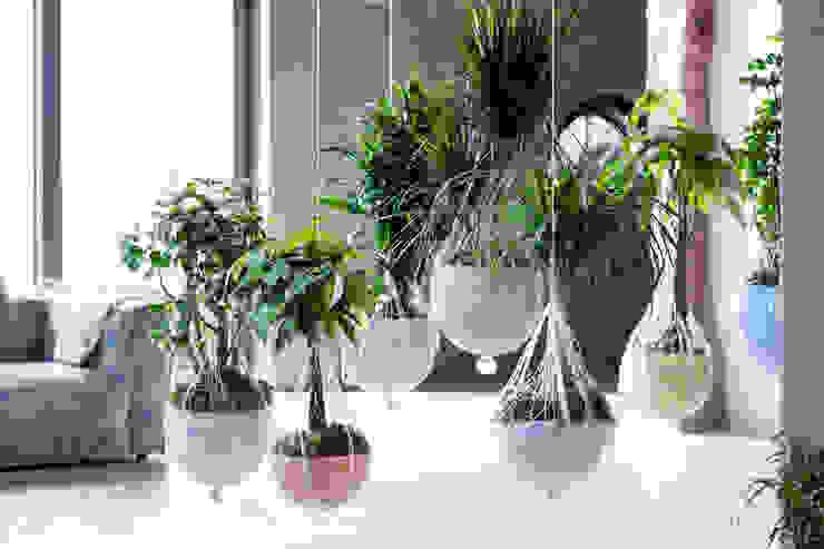 Paysagisme d'intérieur de style  par Pflanzenfreude.de