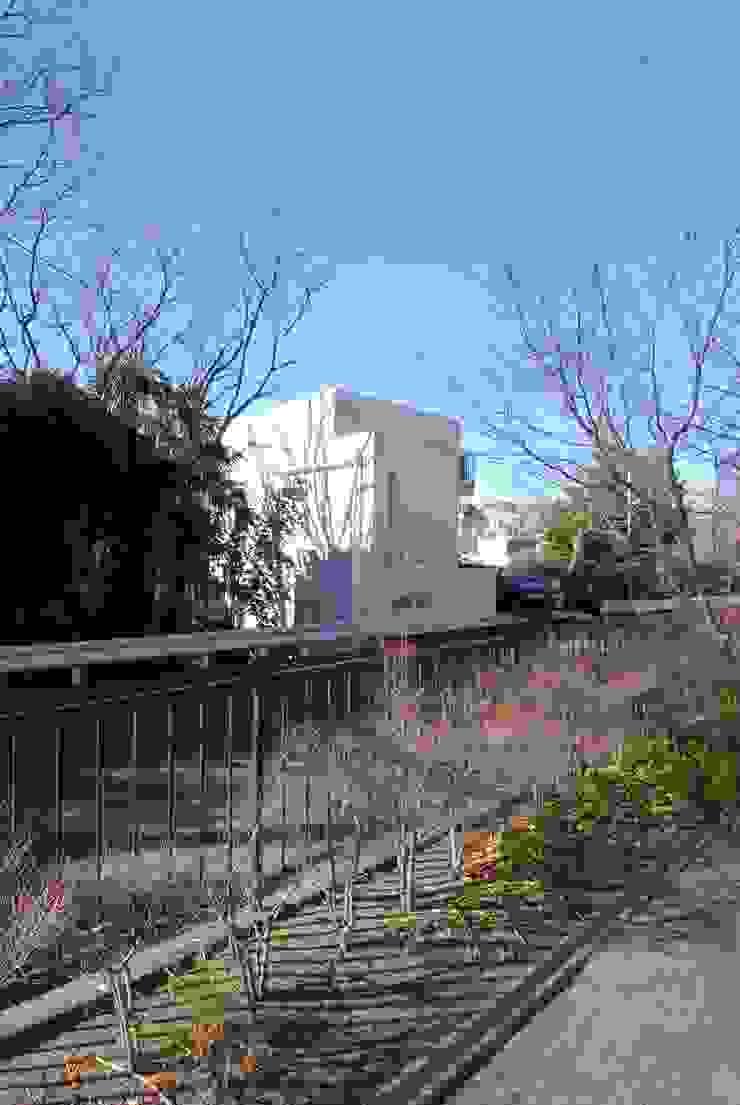 緑に囲まれた白い箱 株式会社TERRAデザイン オリジナルな 家 鉄筋コンクリート 白色