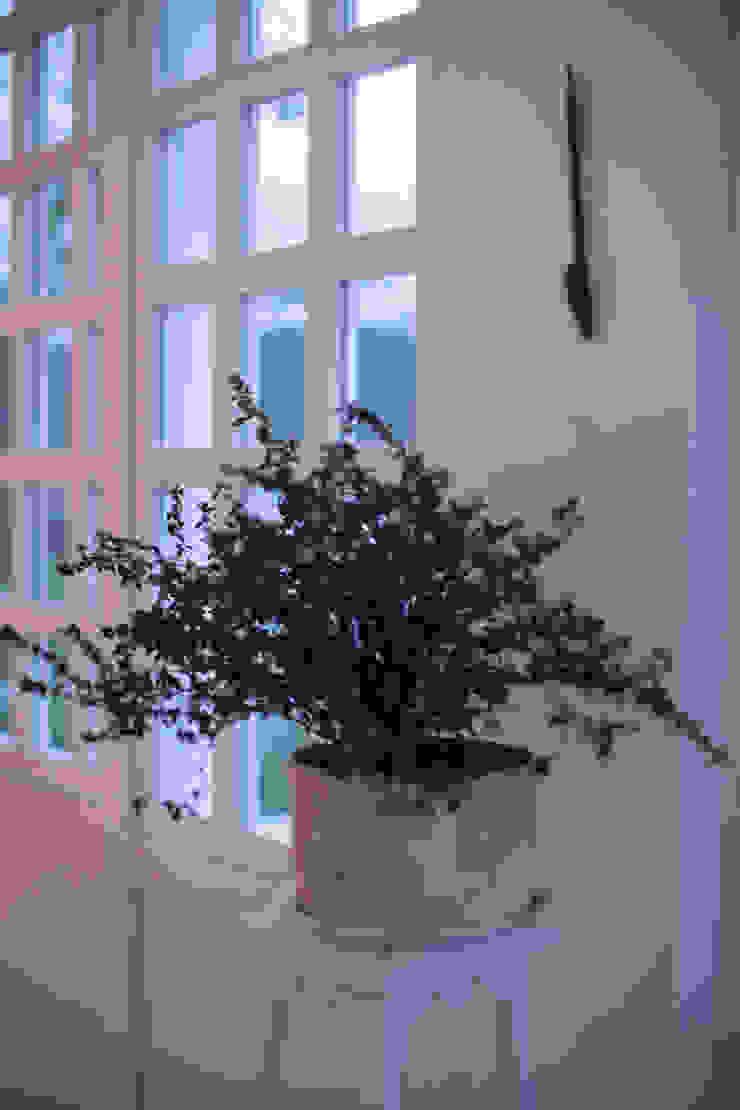 SDHR Arquitectura Classic windows & doors Wood White
