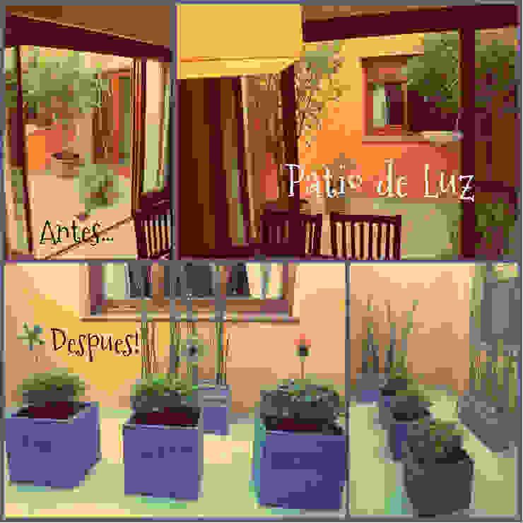 Jardin familiar Jardines de invierno modernos de LAS MARIAS casa & jardin Moderno