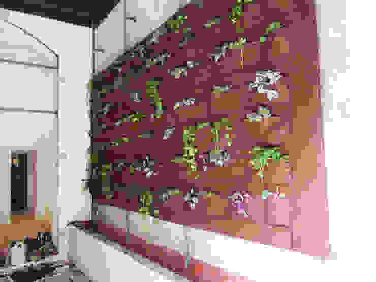 Aida Lopez Paisajista Modern houses
