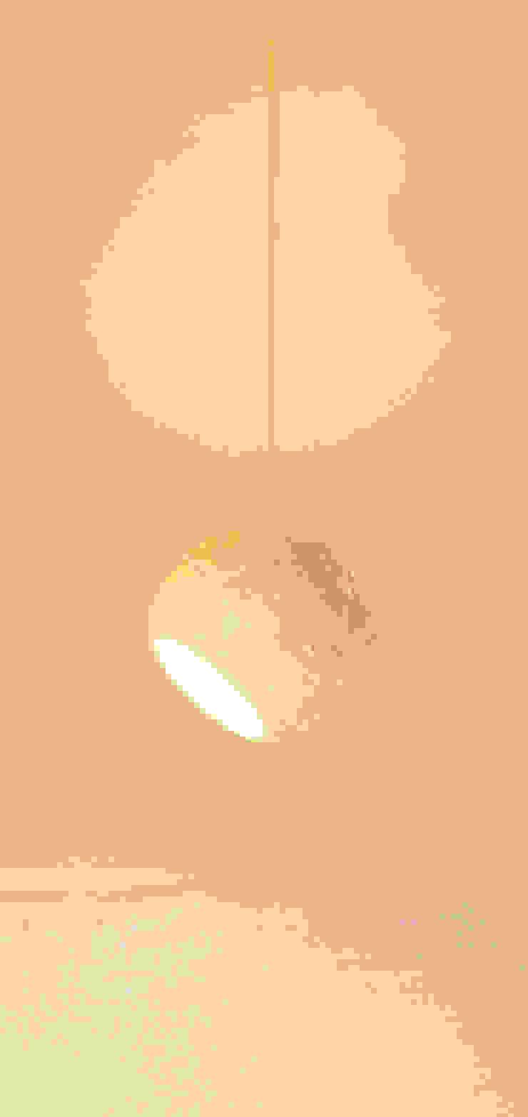 POLPA LAMPS - Paulo Crafter por Blue Art Factory Moderno