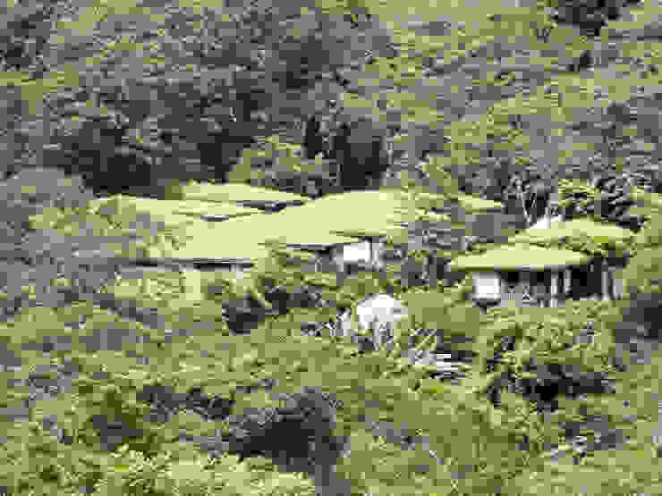 Pueblo Autosuficiente ABCDEstudio Casas de estilo tropical Madera Verde