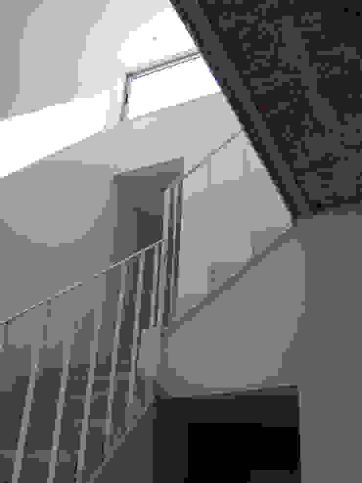 PH en Villa del Parque Pasillos, vestíbulos y escaleras modernos de PERSPECTIVA Moderno