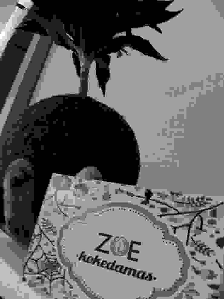 Kokedama Compacta de ZoeDecco Minimalista