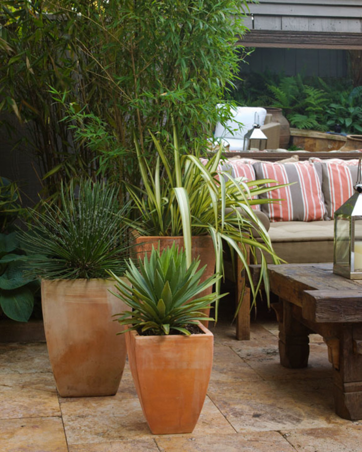 Eclectic style garden by Antonio Martins Interior Design Inc Eclectic