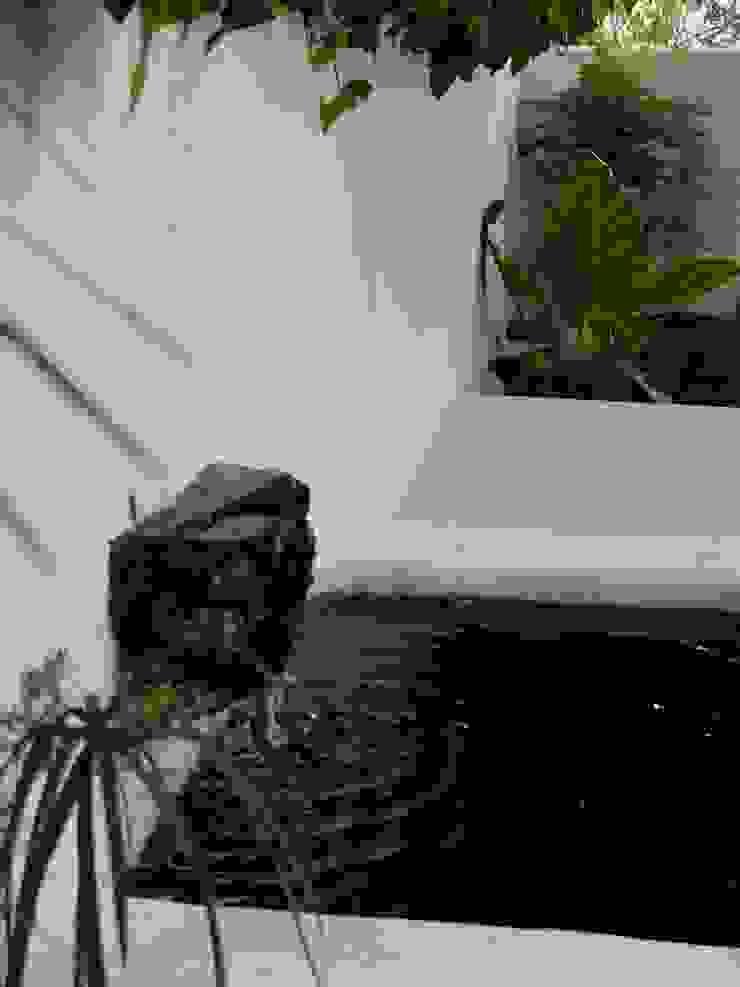 Pormenor de elemento aquático Jardins ecléticos por Atelier Jardins do Sul Eclético