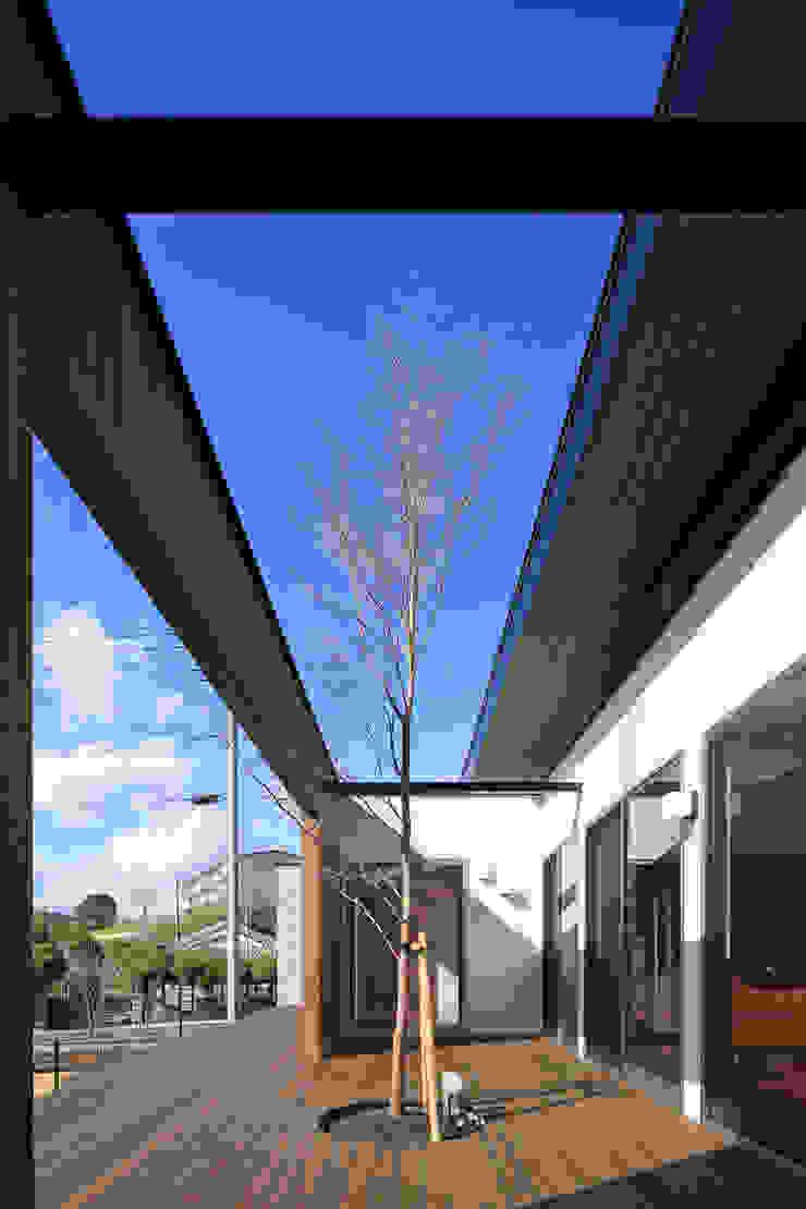 中庭 モダンな庭 の 猪股浩介建築設計 Kosuke InomataARHITECTURE モダン 木 木目調