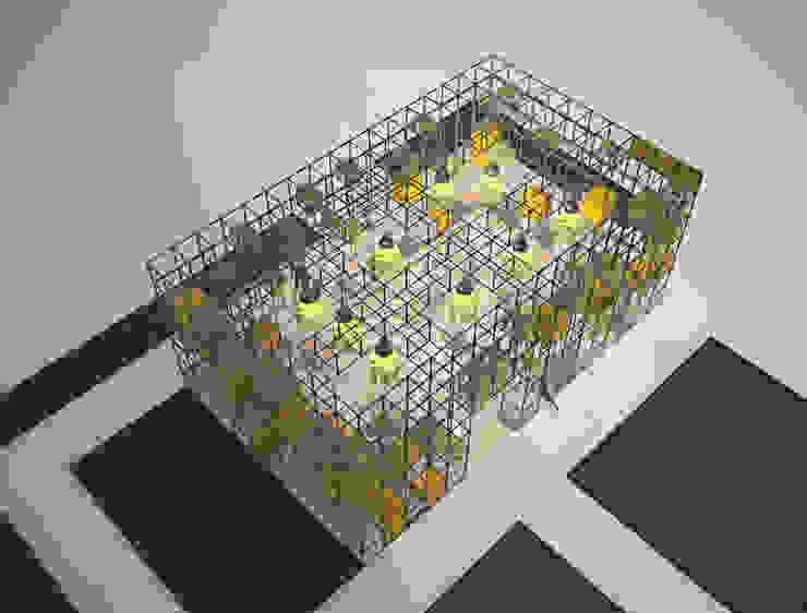 Interior architecture Pil Tasarım Mimarlik + Peyzaj Mimarligi + Ic Mimarlik Modern houses