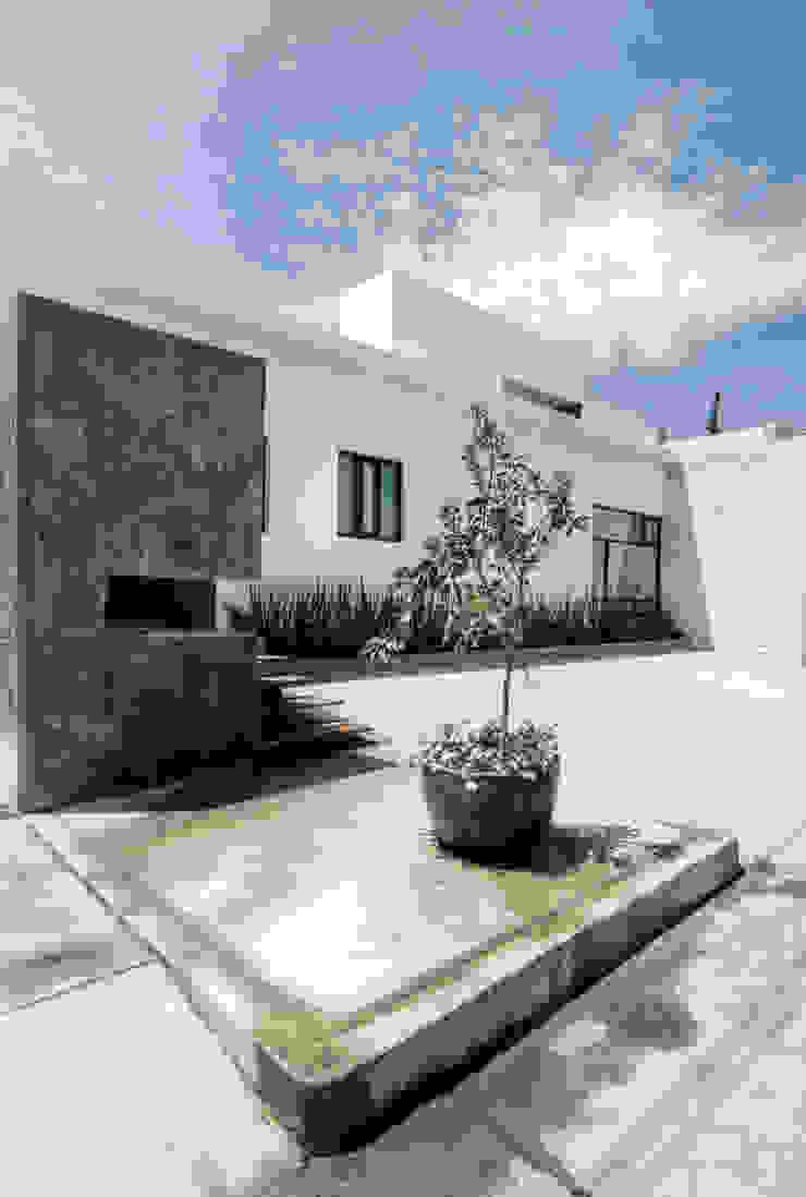 SERES CENTRO HOLÍSTICO Comedores minimalistas de TAQ arquitectura Minimalista Concreto