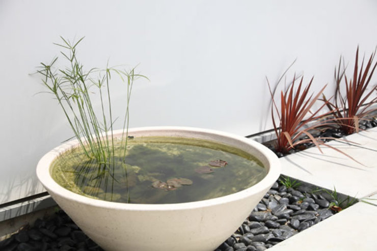 池を望む家-水面を愛でる暮らし-: atelier mが手掛けた現代のです。,モダン
