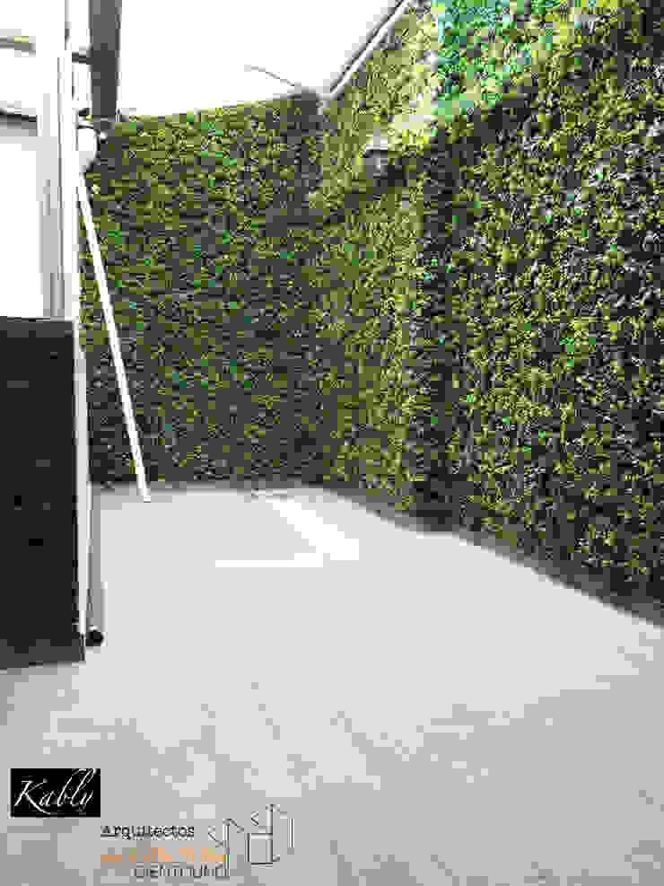 Arquitectura101 + Kably Arquitectos Jardin minimaliste