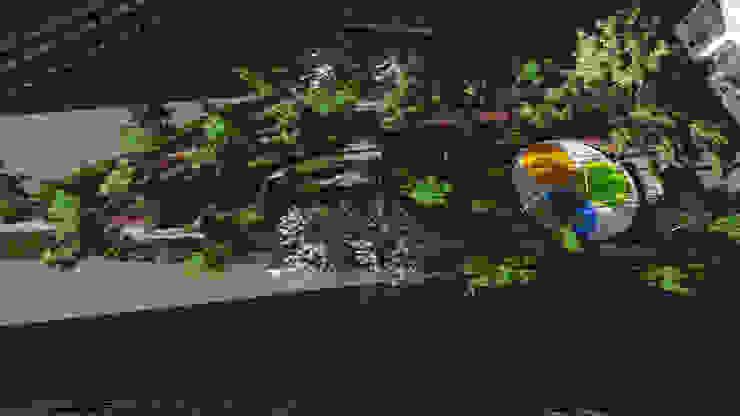 Top View / Üst Görünüş Modern Bahçe Kerem Toprakkaya Modern