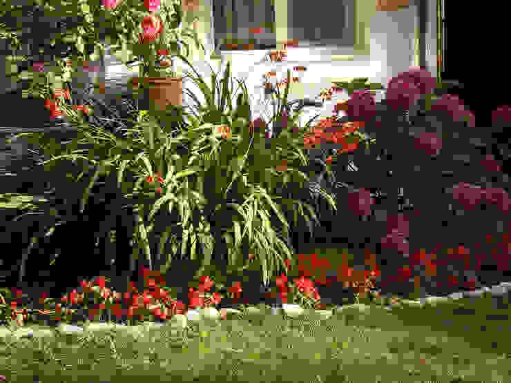 Jardines mediterráneos de konseptDE Peyzaj Fidancılık Tic. Ltd. Şti. Mediterráneo