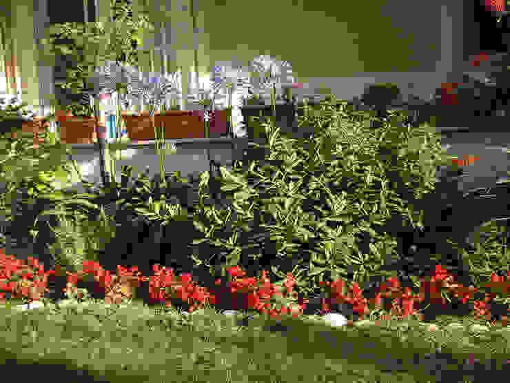 Jardines de estilo mediterráneo de konseptDE Peyzaj Fidancılık Tic. Ltd. Şti. Mediterráneo