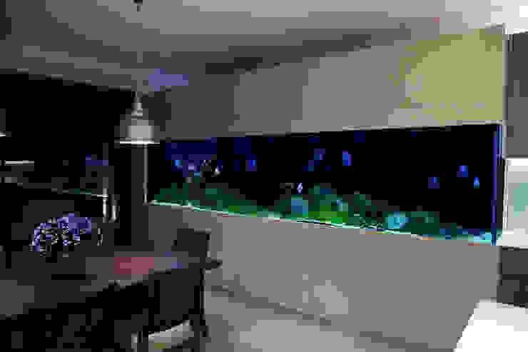 Serene Modern Interior Modern dining room by Aquarium Architecture Modern