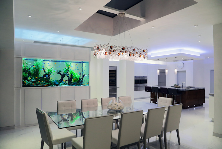 Contemporary Family Home Modern dining room by Aquarium Architecture Modern