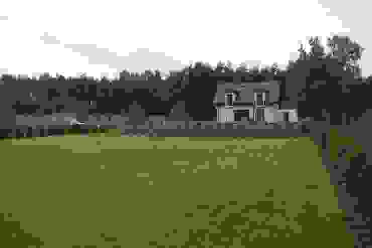 Trawnik z siewu po miesiacu prac. od BioArt Ogrody, Architektura Krajobrazu