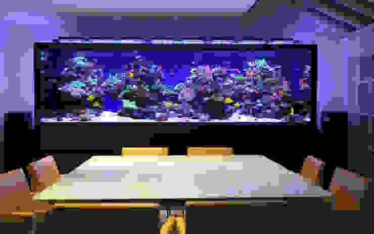 Luxury Townhouse Aquarium モダンデザインの ダイニング の Aquarium Architecture モダン