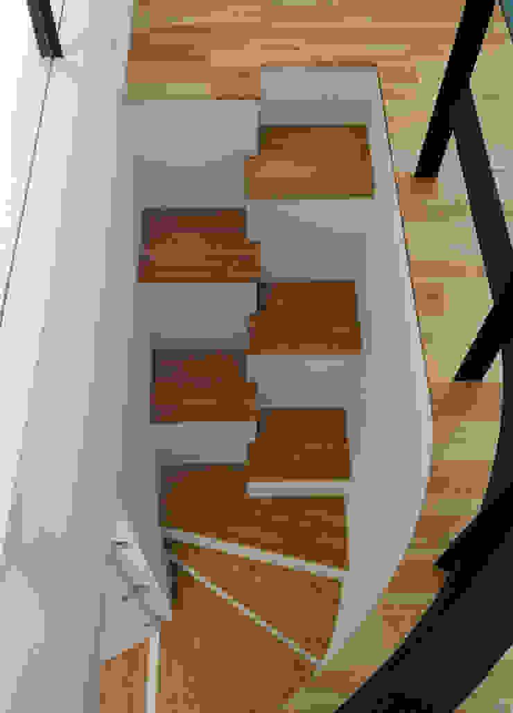 Hill-Top House (Renovation) モダンスタイルの 玄関&廊下&階段 の Sakurayama-Architect-Design モダン