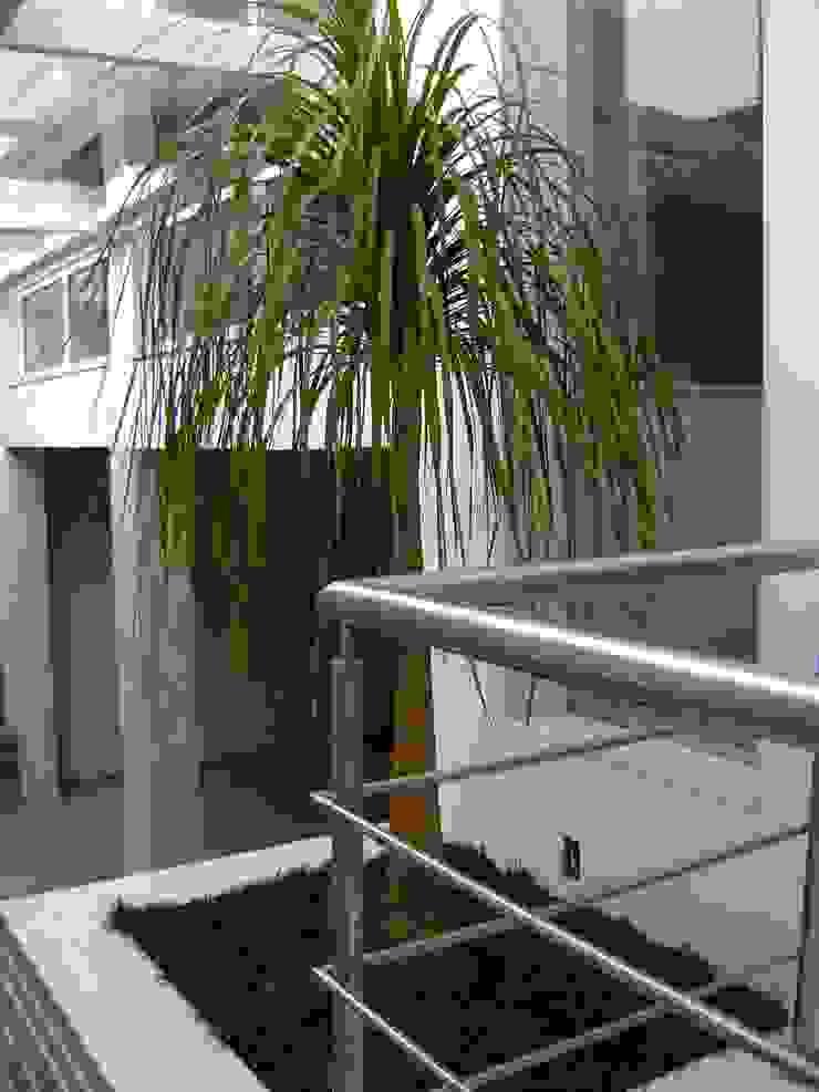Vườn phong cách tối giản bởi MC3 Arquitetura . Paisagismo . Interiores Tối giản