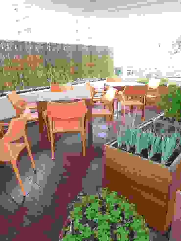 Vườn phong cách chiết trung bởi MC3 Arquitetura . Paisagismo . Interiores Chiết trung
