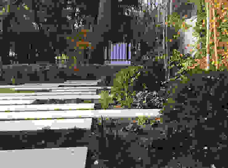 Detalle plantaciones Jardines de estilo moderno de Irati Proyectos Moderno