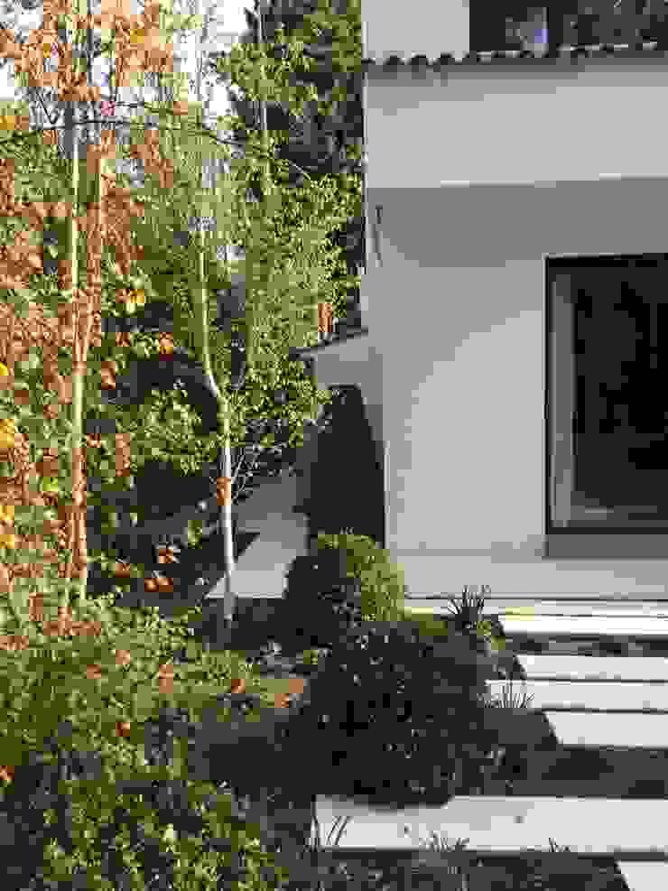 Detalle jardín Jardines de estilo moderno de Irati Proyectos Moderno