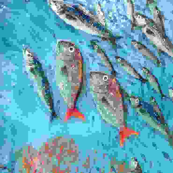 Cam Deniz Dibi Çalışmasında Örnek Akdeniz Duvar & Zemin Camdal Akdeniz