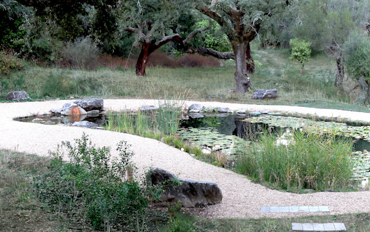 Garden with natural swimming pool Atelier Jardins do Sul Eclectic style garden