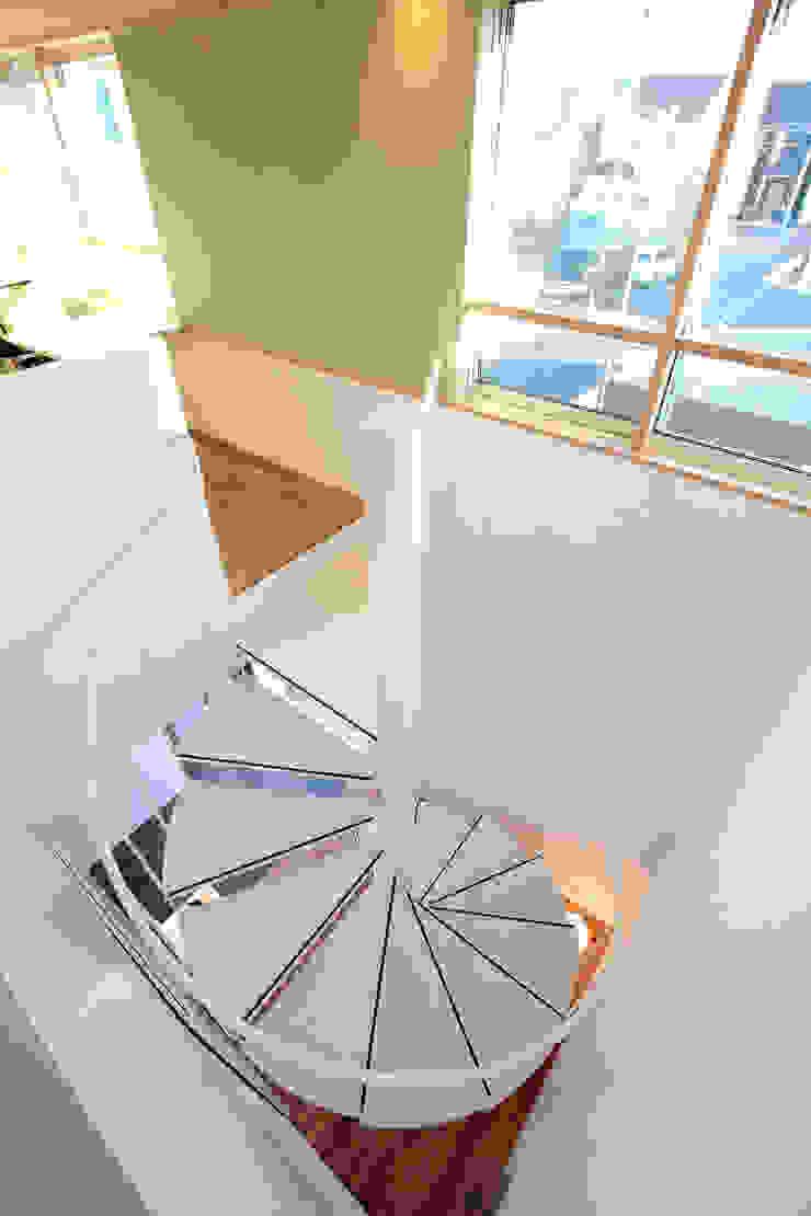 三島丘の社屋 オリジナルスタイルの 玄関&廊下&階段 の ニュートラル建築設計事務所 オリジナル