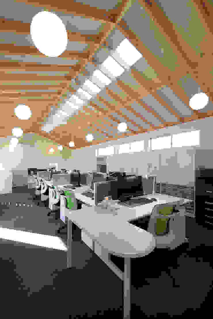 2階 事務所 オリジナルな 壁&床 の ニュートラル建築設計事務所 オリジナル
