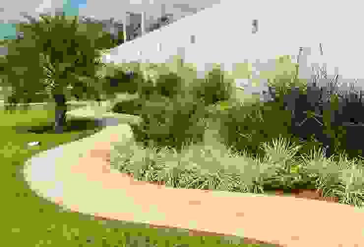 Jardín  y andador : Jardines de estilo  por EcoEntorno Paisajismo Urbano, Minimalista