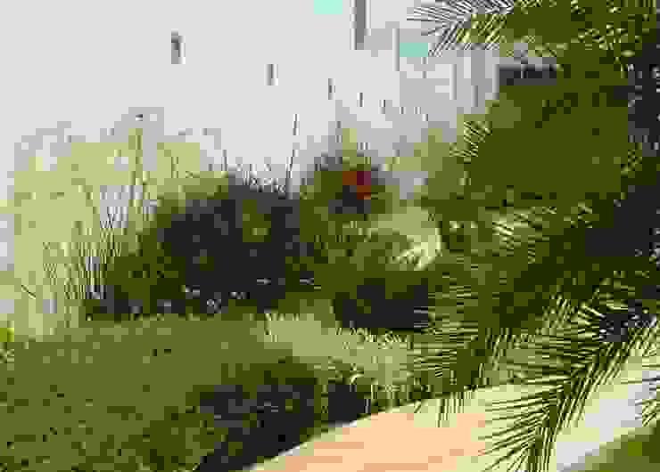 Jardín y andador Jardines minimalistas de EcoEntorno Paisajismo Urbano Minimalista
