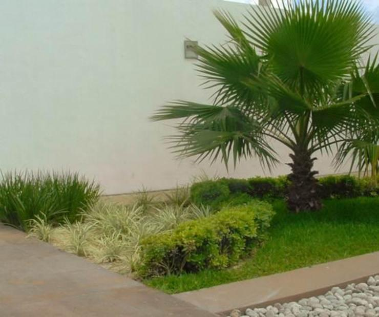Jardín junto a bar Jardines minimalistas de EcoEntorno Paisajismo Urbano Minimalista