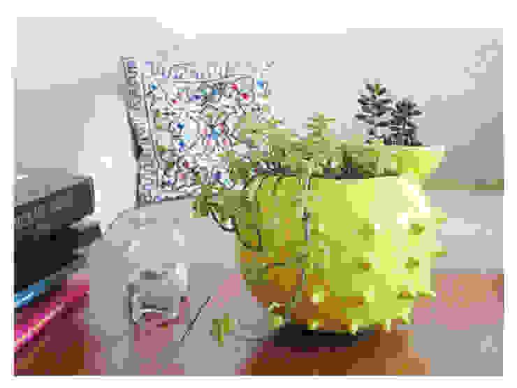 modern  by katmandu ceramica, Modern برتن