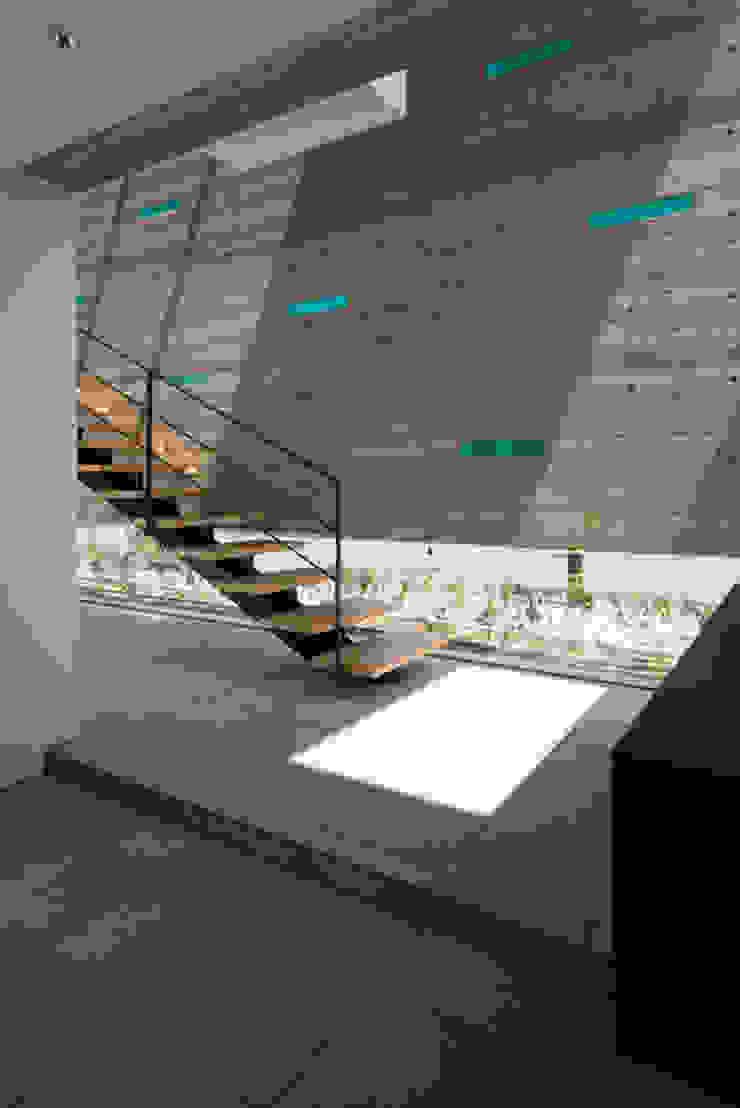 KaleidoscopeⅠ モダンスタイルの 玄関&廊下&階段 の 澤村昌彦建築設計事務所 モダン コンクリート