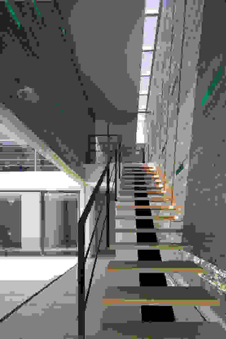KaleidoscopeⅠ モダンスタイルの 玄関&廊下&階段 の 澤村昌彦建築設計事務所 モダン