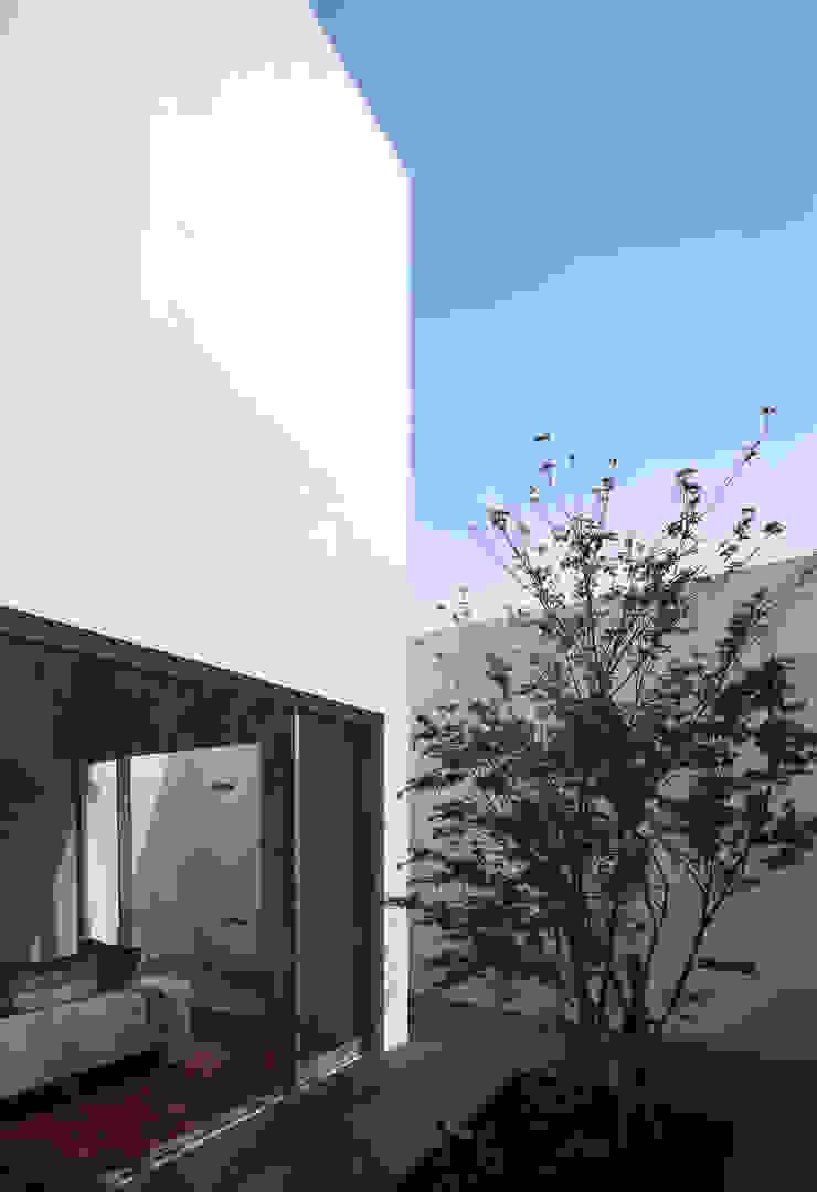KaleidoscopeⅣ モダンな庭 の 澤村昌彦建築設計事務所 モダン