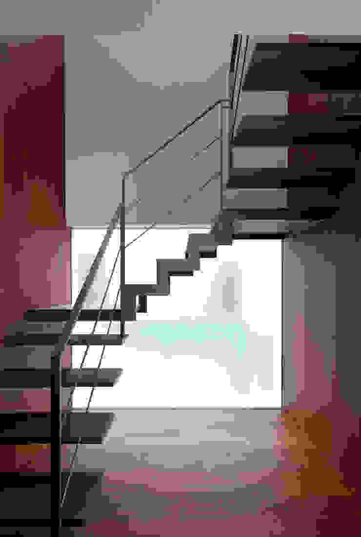 KaleidoscopeⅣ モダンスタイルの 玄関&廊下&階段 の 澤村昌彦建築設計事務所 モダン