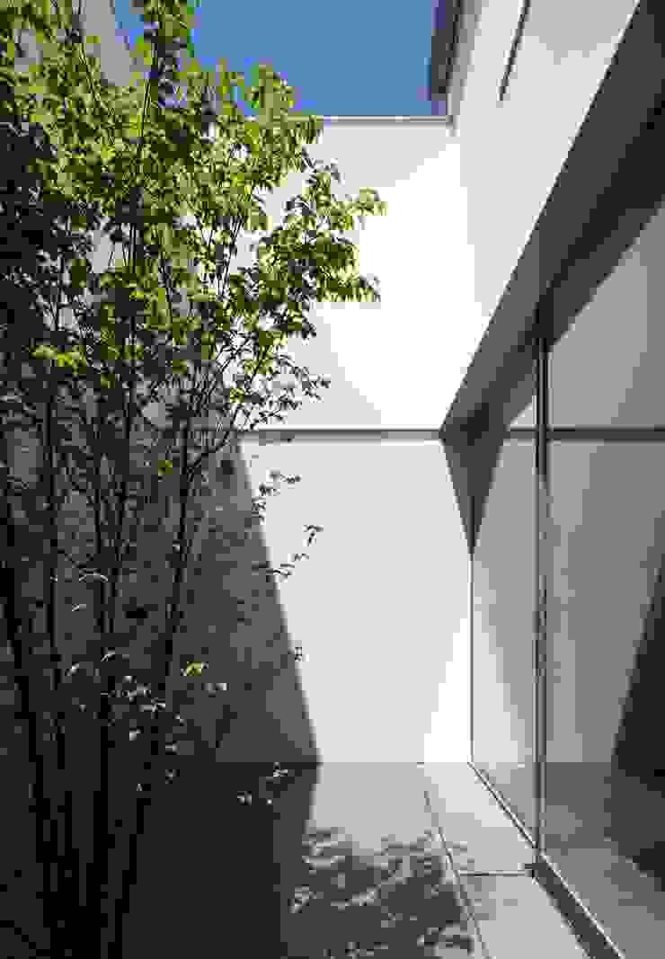 YAMANOUCHI House モダンな庭 の 澤村昌彦建築設計事務所 モダン